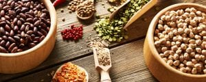 dog food without peas and legumes